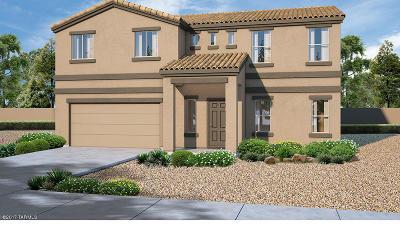 Single Family Home For Sale: 6530 E Brushback Loop