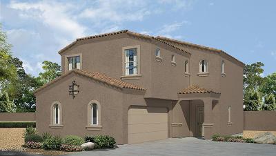 Single Family Home For Sale: 6547 E Brushback Loop