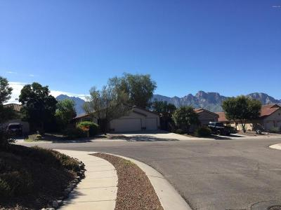 Oro Valley Single Family Home For Sale: 13456 N Wide View Drive