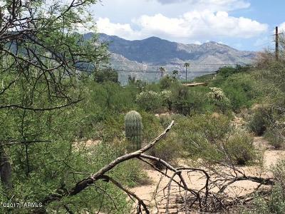 Tucson Residential Lots & Land For Sale: 4544 N Flecha Drive #17