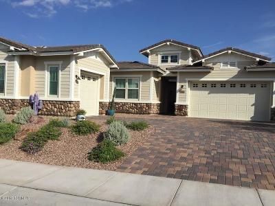 Marana Single Family Home For Sale: 7400 W Cactus Flower Pass W