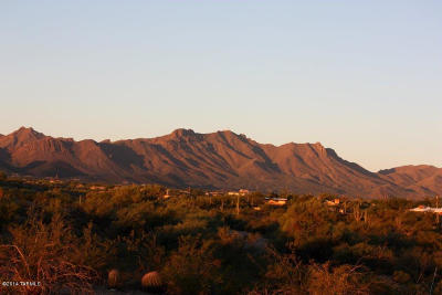 Tucson Residential Lots & Land For Sale: 4100 N Silverbell Road