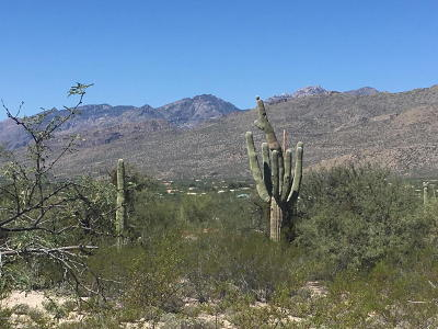 Tucson Residential Lots & Land For Sale: 12441 E Fireweed Lane #3