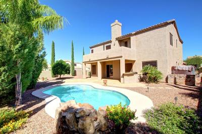 Oro Valley Single Family Home For Sale: 249 W Milbrae Springs Drive