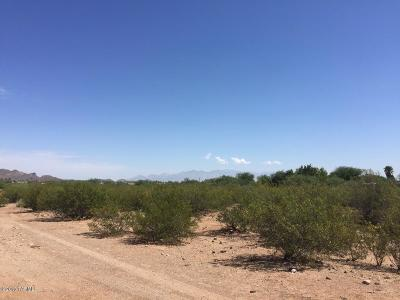 Tucson Residential Lots & Land For Sale: 3500 W Hermans Road
