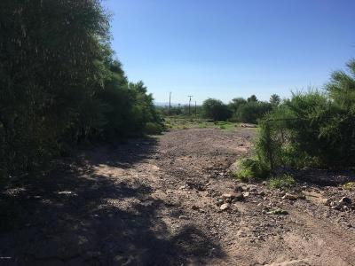 Tucson Residential Lots & Land For Sale: 1361 S Camino Santiago #14