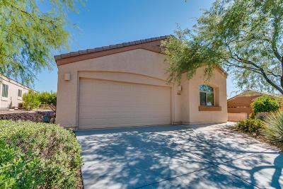 Marana Single Family Home For Sale: 5393 W Mountain Pueblo Lane