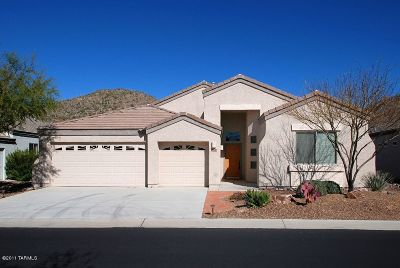 Single Family Home For Sale: 5080 W Coyote Gulch Loop