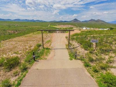 Cochise County Single Family Home For Sale: 919 W Highway 82