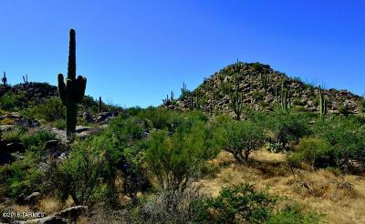 Tucson Residential Lots & Land For Sale: 953 W Granite Gorge Drive #321