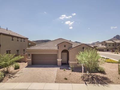Marana Single Family Home For Sale: 9021 W Twin Springs Drive