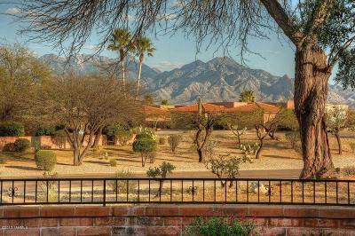 Green Valley Single Family Home For Sale: 3841 S Placita De La Moneda