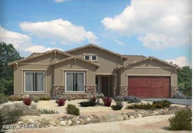 Oro Valley Single Family Home For Sale: 11082 N Delphinus Street