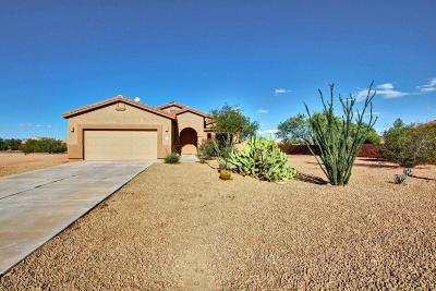 Marana Single Family Home For Sale: 10136 N Avra Vista Drive