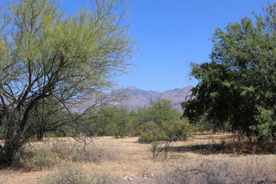 Residential Lots & Land For Sale: 10495 E Tanque Verde Road