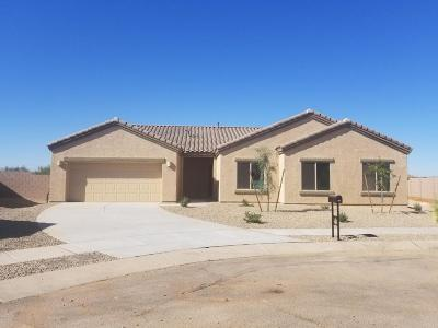 Single Family Home For Sale: 7969 W Imperial Eagle Court