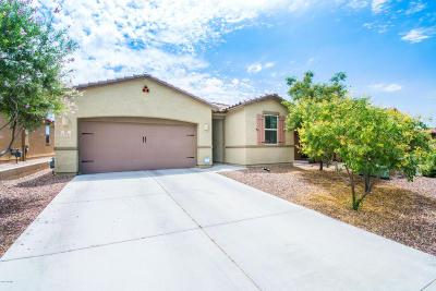 Marana Single Family Home For Sale: 12094 N Meditation Drive