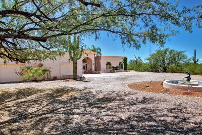 Tucson Single Family Home For Sale: 3900 N Smokey Topaz Lane