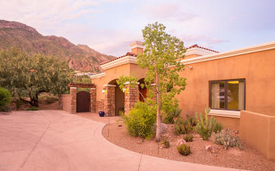 Tucson Single Family Home For Sale: 4660 E Quivira Drive