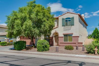 Sahuarita Single Family Home For Sale: 15035 S Camino Rancho Sueno