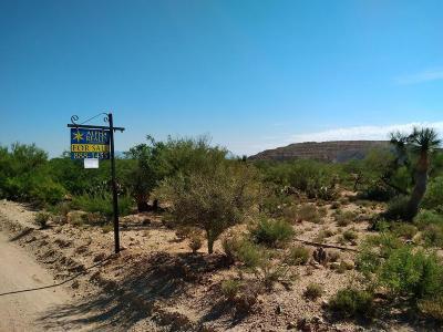 Sahuarita Residential Lots & Land For Sale: 14455 S Avenida Little Dogie