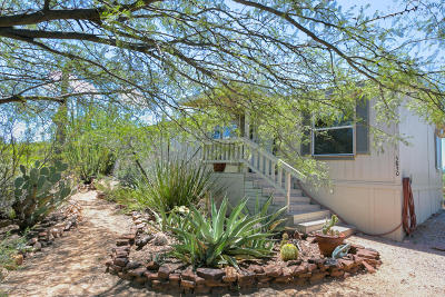 Tucson Single Family Home For Sale: 5830 N Tarantula Trail
