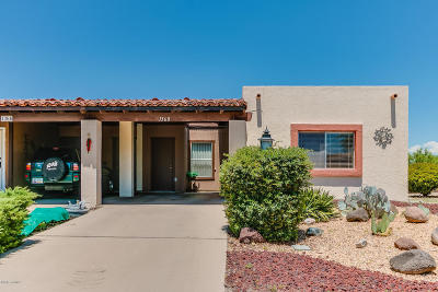 Green Valley Single Family Home For Sale: 1360 W Camino Lucientes