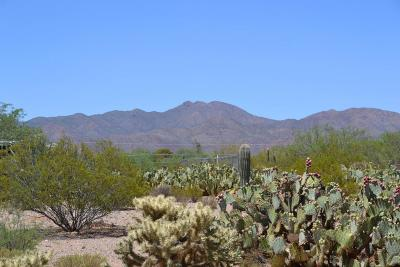 Tucson Residential Lots & Land For Sale: 3162 S Delfina Drive #1
