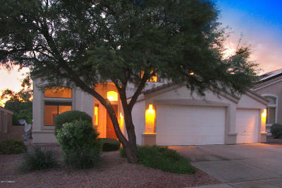 Oro Valley Single Family Home For Sale: 314 W Klinger Canyon Drive