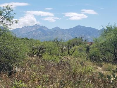 Oro Valley Residential Lots & Land For Sale: 14430 N Sun Spring Drive #77
