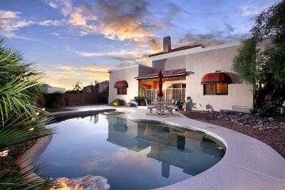 Tucson Single Family Home For Sale: 2727 W Calle San Manuel