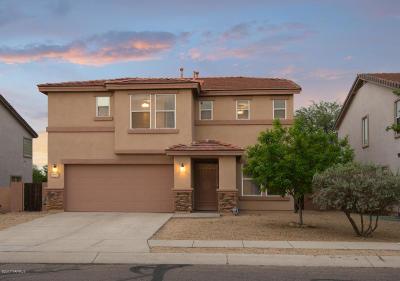 Sahuarita Single Family Home For Sale: 14651 S Sumac Drive
