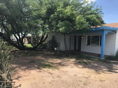 Tucson Single Family Home For Sale: 1027 E Hedrick Drive