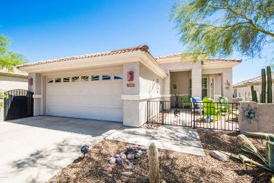 Marana Single Family Home For Sale: 13572 N Holly Grape Drive