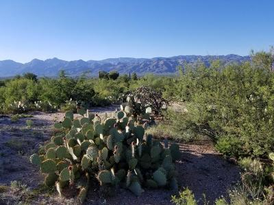 Tucson Residential Lots & Land For Sale: 11301 E Broadway Boulevard