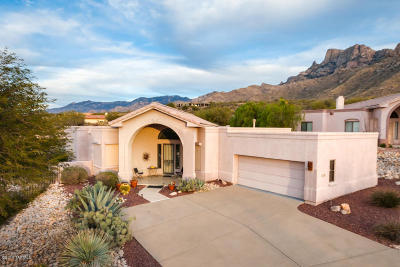 Oro Valley Single Family Home For Sale: 10120 N Alder Spring Drive