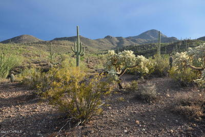 Tucson Residential Lots & Land For Sale: W El Camino Del Cerro