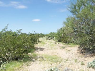 Tucson Residential Lots & Land For Sale: 12000 E Rincon Foothills Place #1