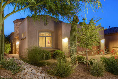 Tucson Single Family Home For Sale: 5752 N Loft Lane