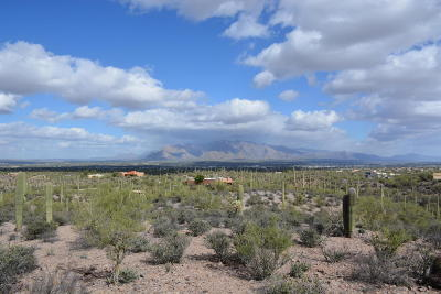 Tucson Residential Lots & Land For Sale: W Lazy C Drive Drive