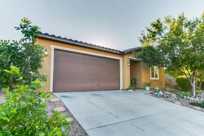 Vail Single Family Home For Sale: 17084 S Painted Vistas Way