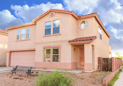 Tucson Single Family Home For Sale: 3958 W Rocky Spring Drive