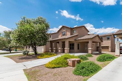 Sahuarita Single Family Home For Sale: 220 W Camino Espiga