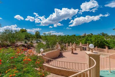 Tucson Single Family Home For Sale: 1422 N Camino Miraflores