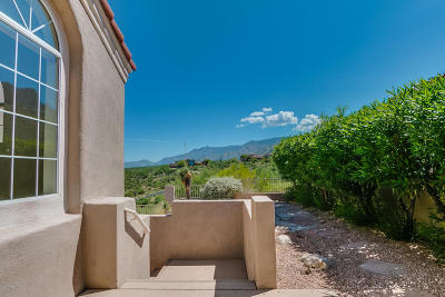 Tucson Single Family Home For Sale: 9918 N Bighorn Butte Drive
