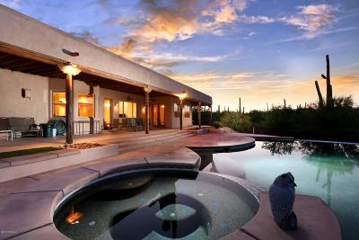 Tucson Single Family Home For Sale: 4010 N Avenida Dos Vistas