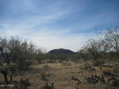 Tucson Residential Lots & Land For Sale: W Pyle Road