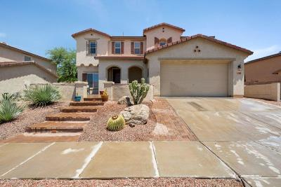 Tucson Single Family Home For Sale: 3567 E Mecate Road