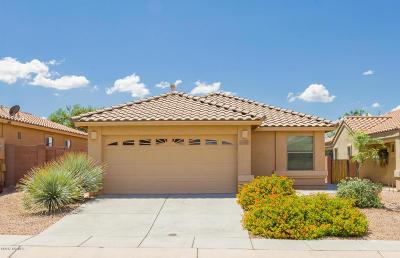 Sahuarita Single Family Home Active Contingent: 313 N Rock Station Drive