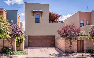 Tucson Single Family Home For Sale: 282 E Croydon Park Road